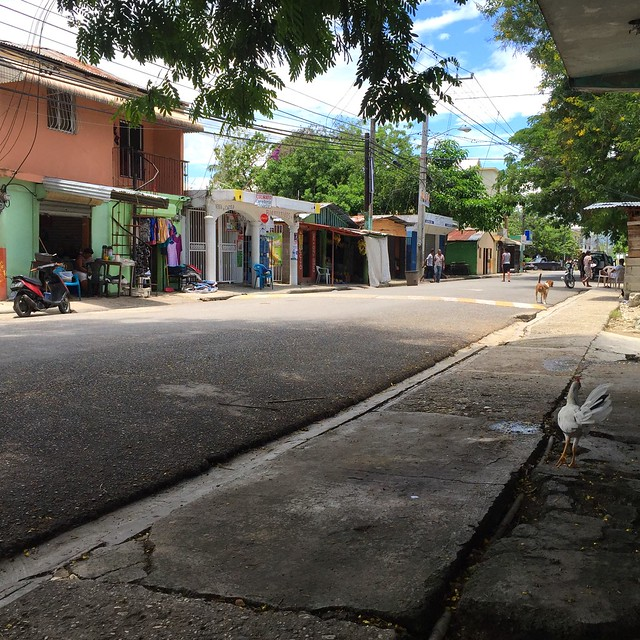 Dominikanischer Straßenverkehr & Mietwagen [31.05.2016]