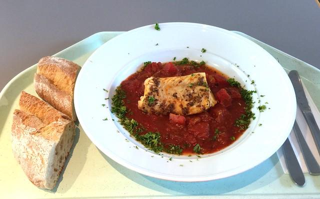 Griechischer Schweinegyros mit Tzatziki, frischen Zwiebeln & Pommes frites [01.09.2016]