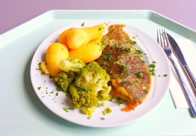 Gebratene Scholle mit Salzkartoffeln, Zitronenbutter & Romanesco [21.06.2017]