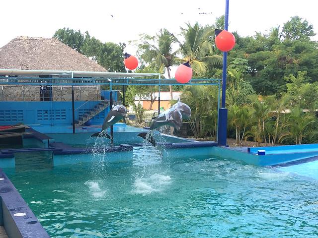 Punta Cana & Manati Park [05.-06-.01.2017]