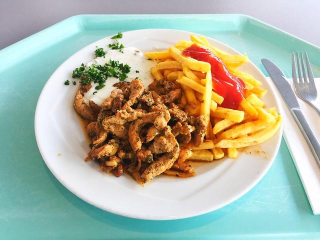 Griechisches Gyros vom Schwein mit Tzatziki & Pommes Frites [21.02.2018]