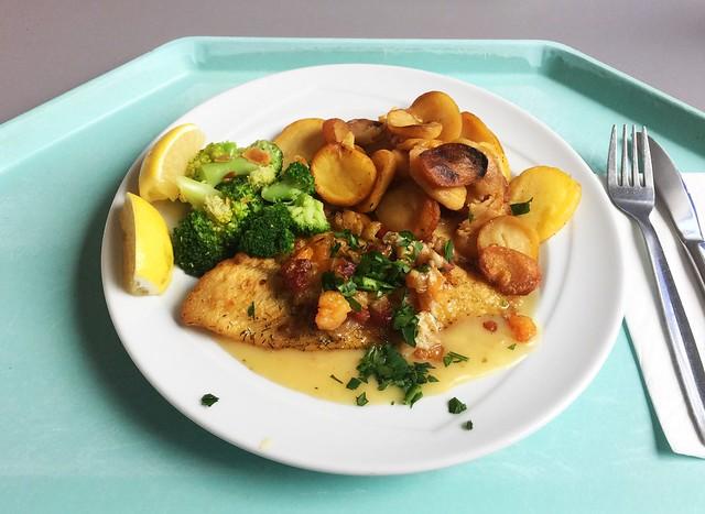 """Gebratene Scholle """"Finkenwerder Art"""" mit Sauce Hollandaise, Broccoli & Bratkartoffeln [23.11.2018]"""