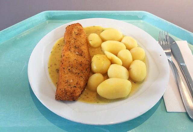 "Seelachsfilet ""Bordelaise"" mit Senfsoße & Kartoffeln [03.05.2019]"
