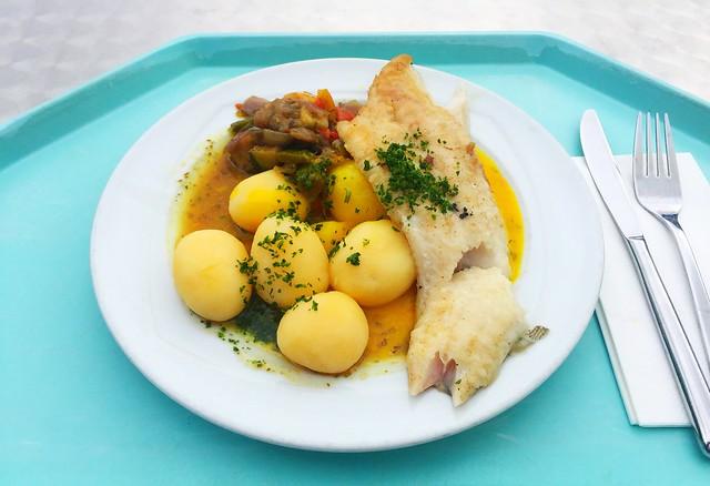 Zanderfilet auf Schmorgemüse mit Safransoße & Salzkartoffeln [26.09.2019]